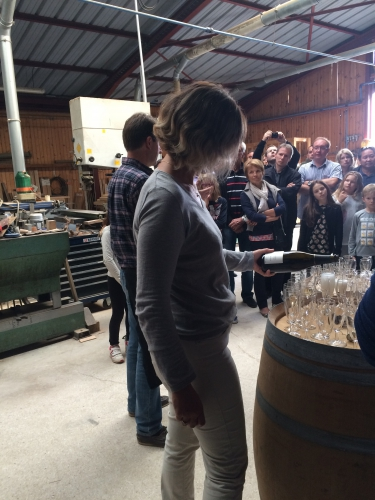 reims,champagne,racine,kazu tanaka,delphine et francis boulard,fundovino,bérèche et fils