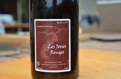 domaine saurigny,jean-françois chéné,jérôme saurigny,la coulée d'ambrosia,loire,vin de france,grolleau