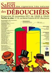 beaujolais,beaujolais nouveau,beaujolais-villages,vauxrenard,michel guignier,domaine des côtes de la molière,isabelle perraud,lilian bauchet,château des bachelards,domaine de la fully,céline-audrey vermorel