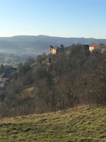 vœux,bonne année,clos rougeard,brézé,le bourg,saumur,charly foucault,château de belvoir,madgefa