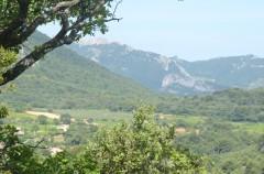 ventoux,olivier b.,philippe gimel,les amidyves,saint-jean du barroux,carpentras,chez serge