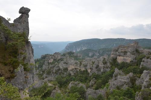 la caylar,escarpolette ivo,mas coris,languedoc,bédarieux,chai christine cannac