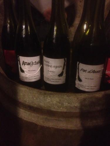 tronches de vin,dive bouteille,les canons,saumur,brézé,sylvie augereau,stéphane bannwarth