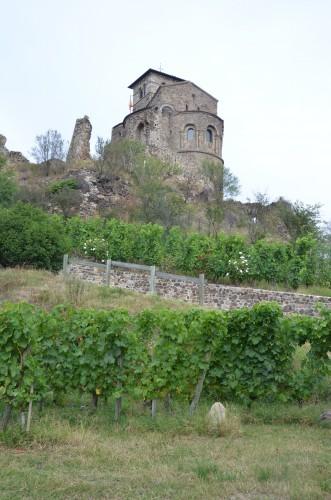 loire,côtes du forez,côtes roannaises,le puy saint-romain,domaie mondon-demeure,gaec du pic,vin&pic,viognier,aldebertus,cuvée diana