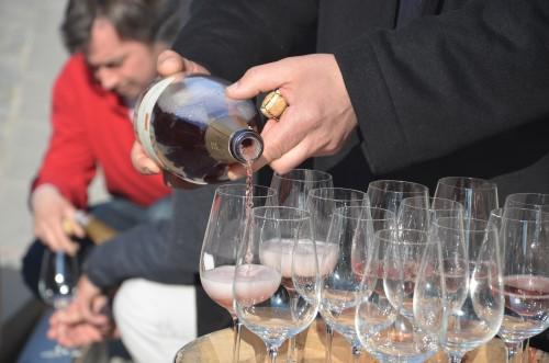 champagne,terres et vins de champagne,vincent laval,marie-noëlle ledru,aÿ,épernay,reims,étienne goutorbe,david léclapart,benoit lahaye,benoit tarlant,francis boulard