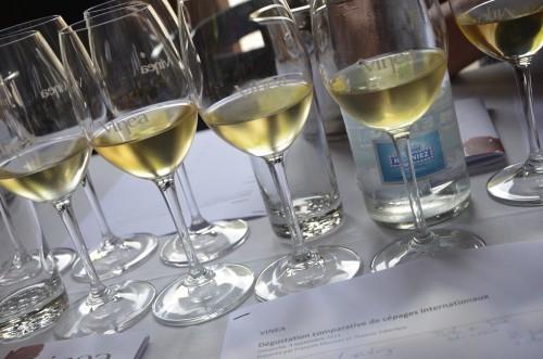 vinéa,sierre,vin suisse,valais,domaine de beudon,thierry constantin,andré fontannaz,romain papilloud,benoit dorsaz,sélection excelsus,jean-claude favre,mike favre,provins valais,vins et chevalier,salquenen,