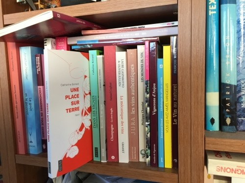 catherine bernard,éditions du rouergue,une place sur terre