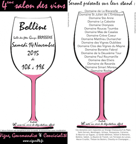 salons,hiraku festival,mois du vin naturel,salon rue89,vini birre ribelli