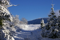 Premiere_neige_040