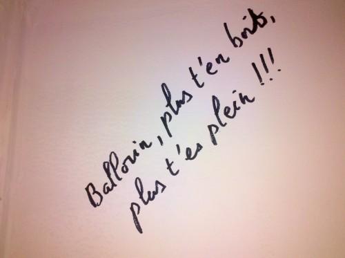 ballorin,domaine ballorin & F,bourgogne,morey-saint-denis,