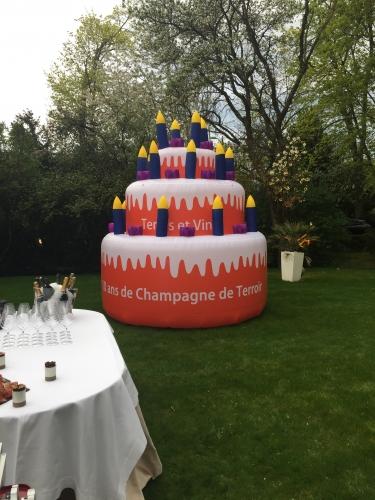 terres et vins de champagne,reims,printemps des champagnes