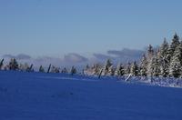 Premiere_neige_041